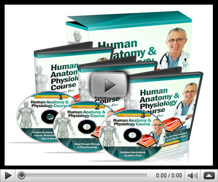 Human Anatomy & Physiology Study Course Review By Dr. James Ross