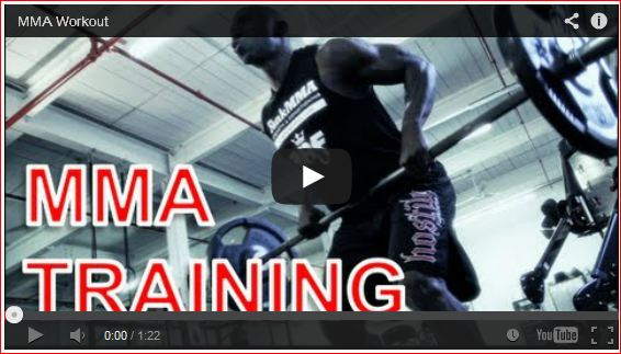 Funk Roberts Spartan Training System Review By Funk Roberts